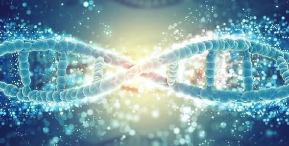 Estudo genético para prevenção e o tratamento de doenças